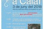 L'Arrela't canvia d'ubicació i torna al bosquet del rentador!