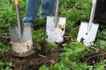 Engeguem una nova formació en 'Jardineria i Manteniment'