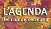 L'Agenda de Calaf- del 25 de març al 26 de març del 2017
