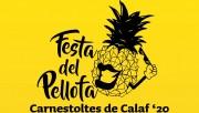 Calaf es prepara per la Festa del Pellofa