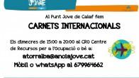 Carnets internacionals