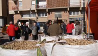 II Fira de la Biomassa Calaf