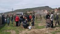 Arrela't a Calaf 2012. Plantada