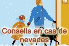 Consells en cas de nevades