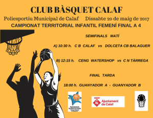Cartell final Campionat territorial femení de bàsquet