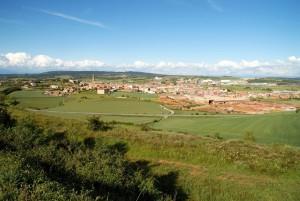 Agro Alta Segarra 2016