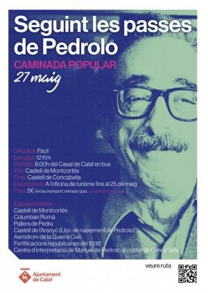 Cartell caminada M.Pedrolo