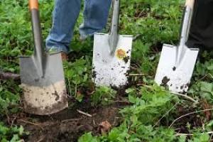 formació jardineria