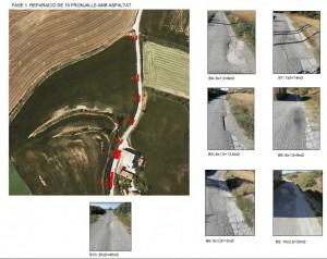 Reparació flonjalls camí del Pou Calaf - desembre 2020