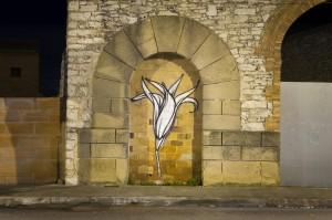 fotografia projecte graffitti