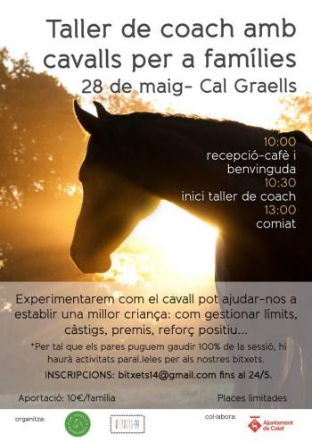 Cartell taller coaching cavalls