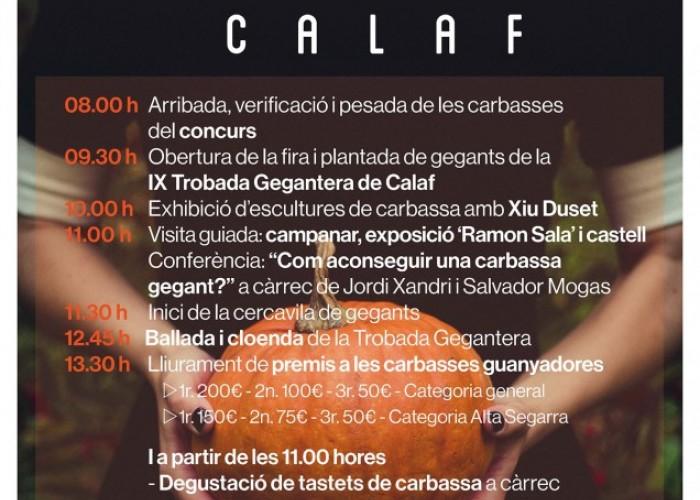 La Fira de la Carbassa comptarà amb una trentena de parades d'artesania, gastronomia i cultiu del fruit de tardor