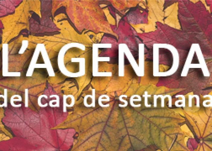 L'Agenda de Calaf - del 3 de febrer al 5 de febrer del 2017