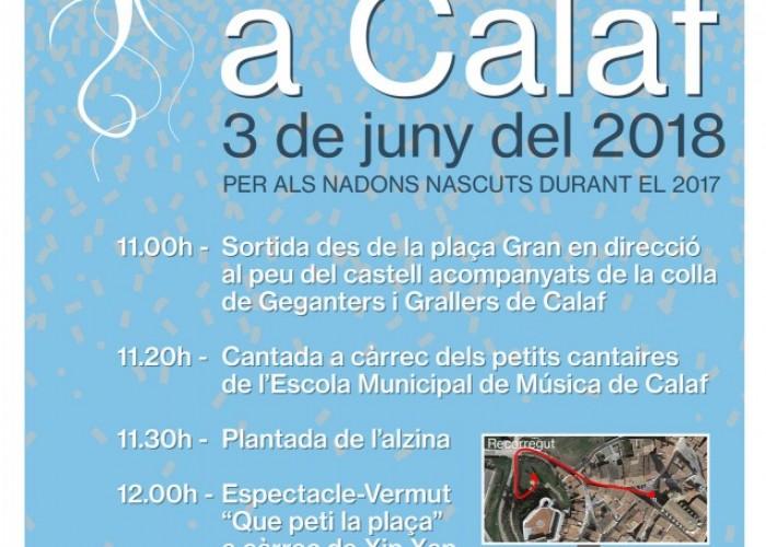 El 3 de juny torna l'Arrela't, la festa dels nadons de Calaf