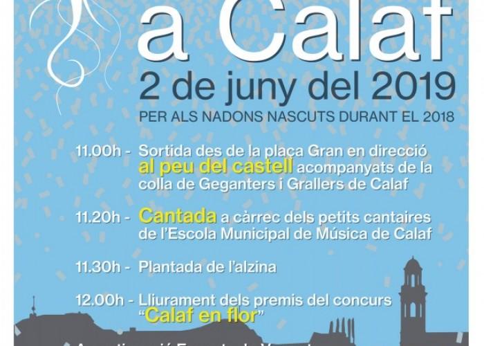Calaf celebra l'Arrela't, la festa dels nadons, el proper 2 de juny