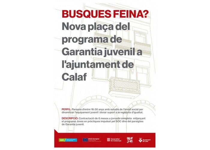 Convocatòria de joves en pràctiques 2019 del Servei d'Ocupació de Catalunya